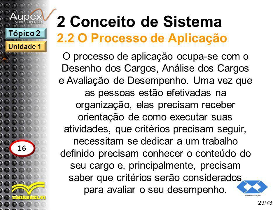 2 Conceito de Sistema 2.2 O Processo de Aplicação