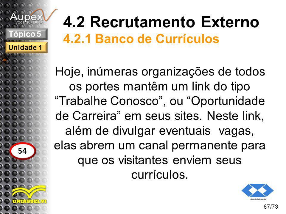 4.2 Recrutamento Externo 4.2.1 Banco de Currículos
