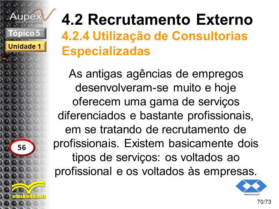 4.2 Recrutamento Externo 4.2.4 Utilização de Consultorias Especializadas
