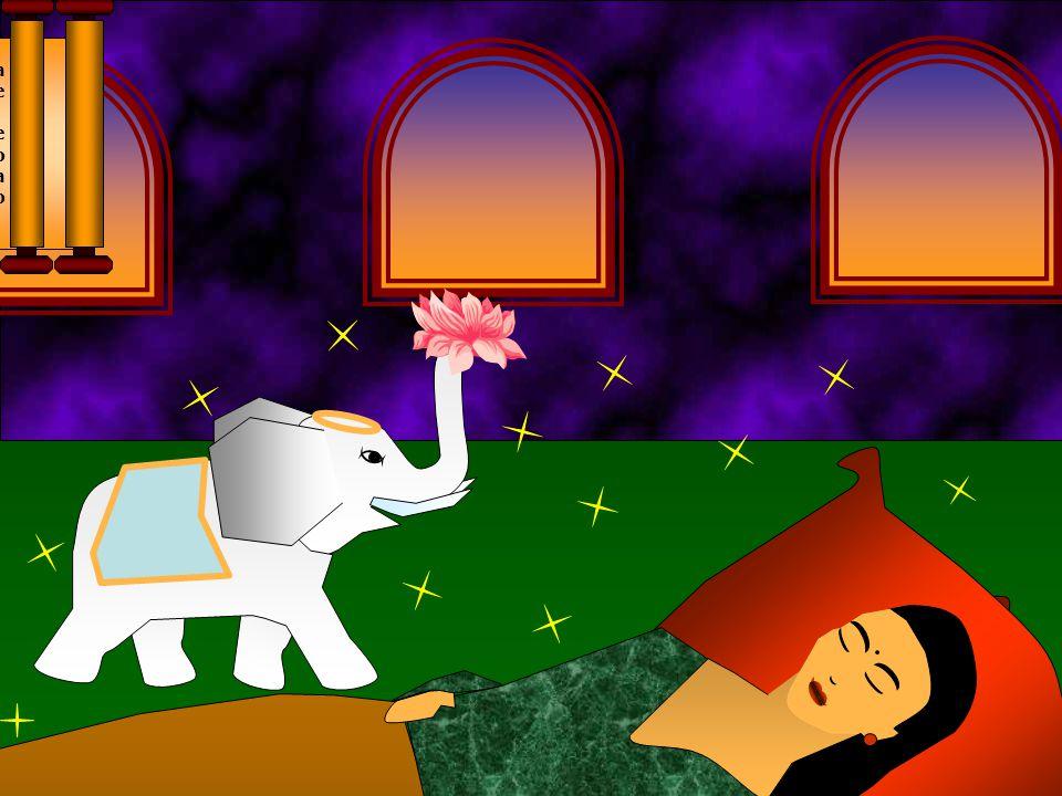 Ela sonhou que quatro seres celestiais vieram levá-la a cordilheira dos Himalaias. Lá ela recebeu vestes divinas. Surge então o futuro Buda, na forma de um soberbo elefante branco carregando uma flor de lótus e três vezes caminha ao redor de sua mãe.
