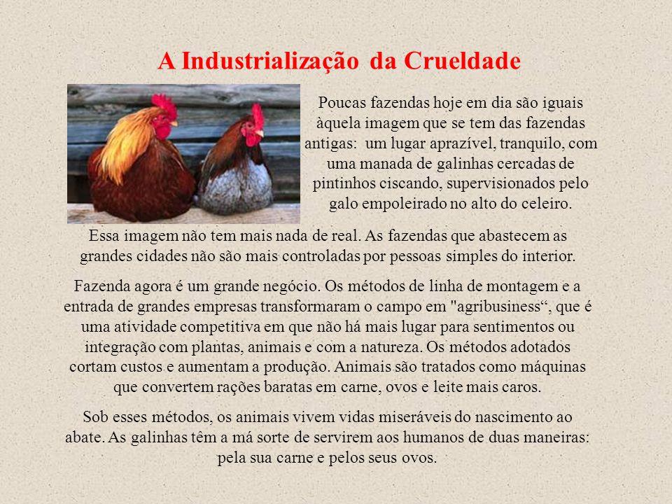 A Industrialização da Crueldade