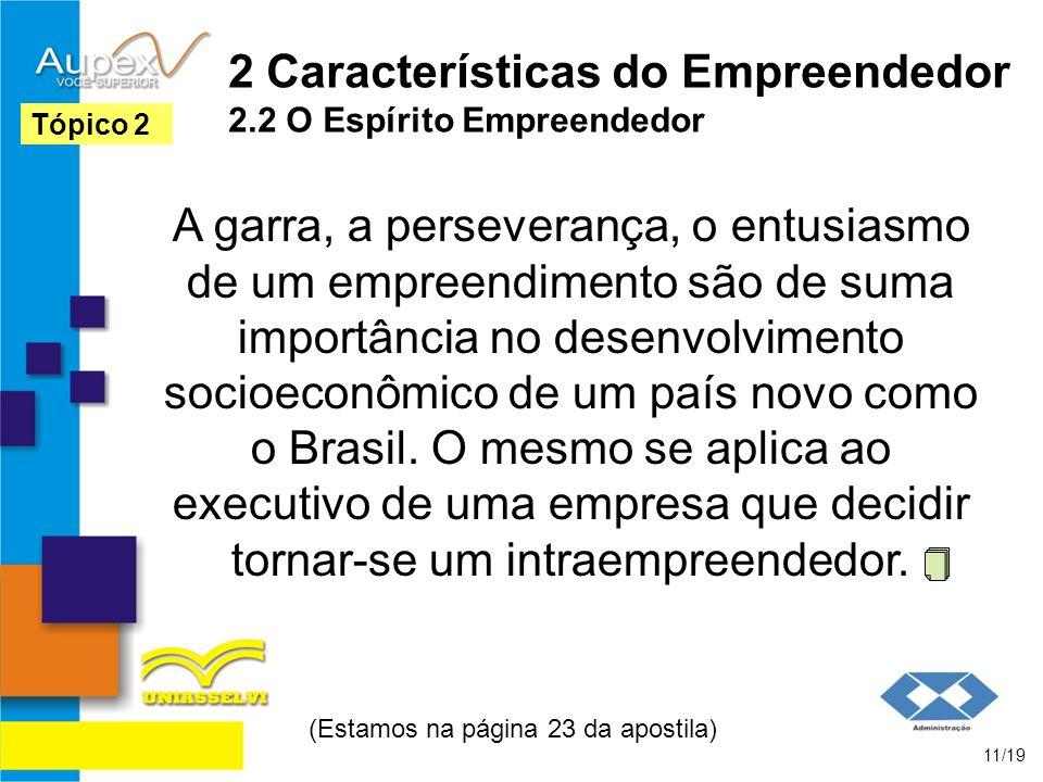 2 Características do Empreendedor 2.2 O Espírito Empreendedor