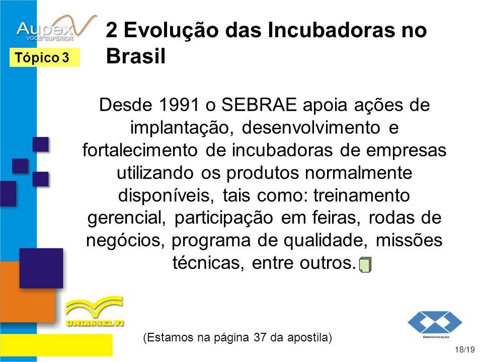 2 Evolução das Incubadoras no Brasil