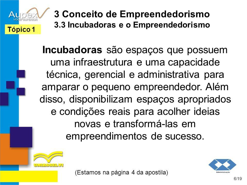 3 Conceito de Empreendedorismo 3.3 Incubadoras e o Empreendedorismo