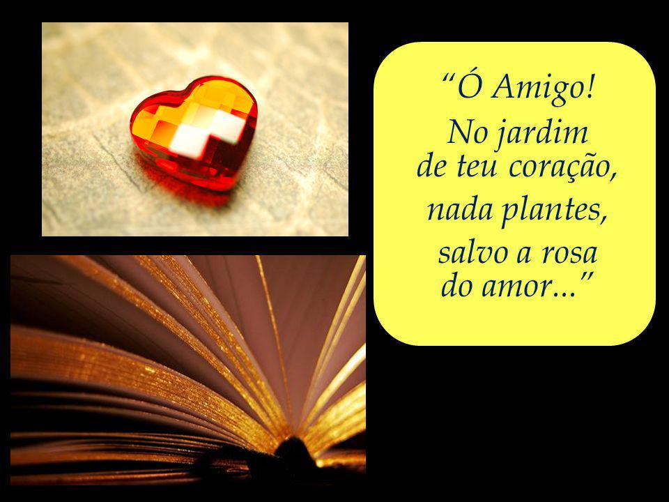 Ó Amigo! No jardim de teu coração, nada plantes, salvo a rosa do amor...