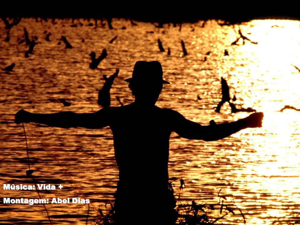 Música: Vida + Montagem: Abel Dias