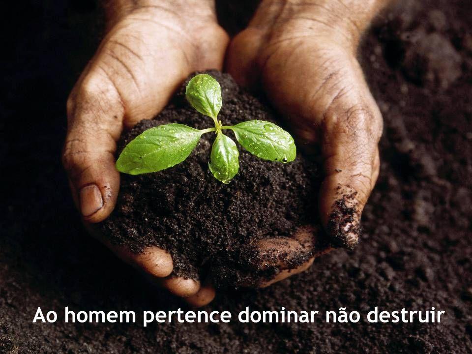 Ao homem pertence dominar não destruir