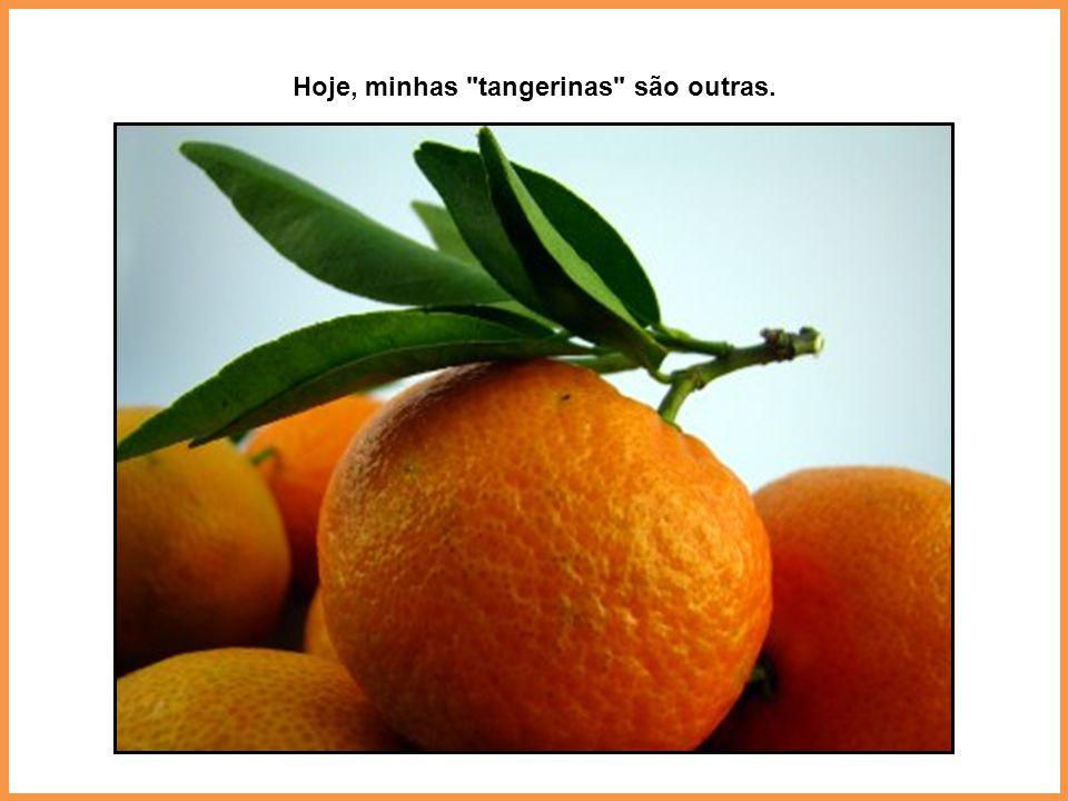 Hoje, minhas tangerinas são outras.