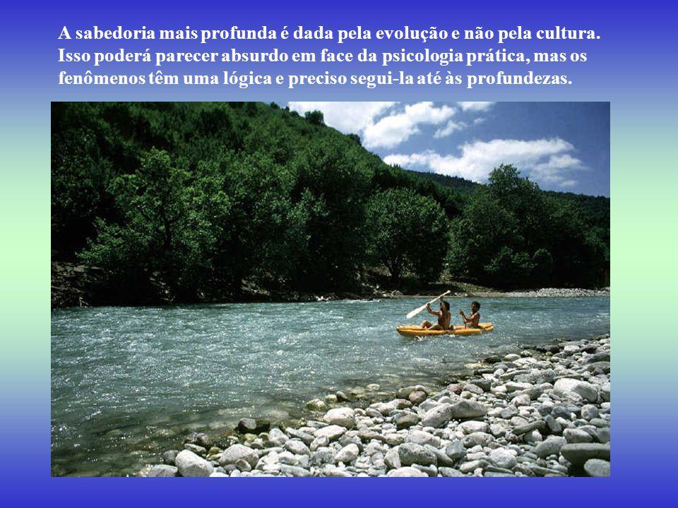 A sabedoria mais profunda é dada pela evolução e não pela cultura.