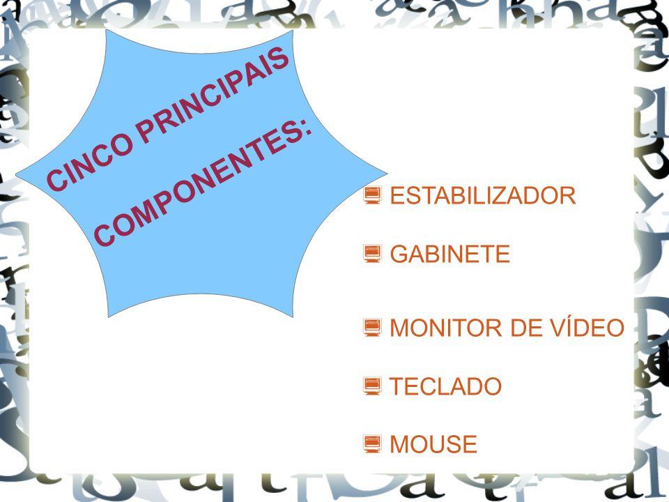 CINCO PRINCIPAIS COMPONENTES:
