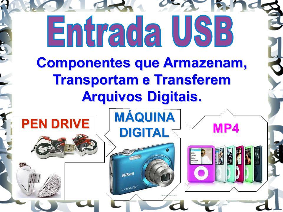 Componentes que Armazenam, Transportam e Transferem Arquivos Digitais.