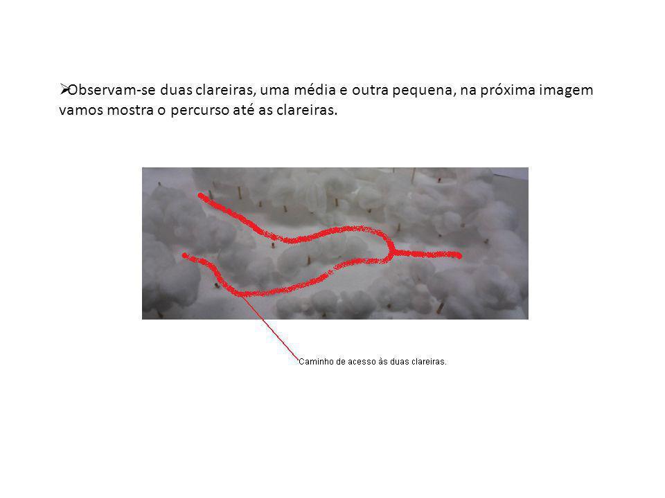 Observam-se duas clareiras, uma média e outra pequena, na próxima imagem vamos mostra o percurso até as clareiras.