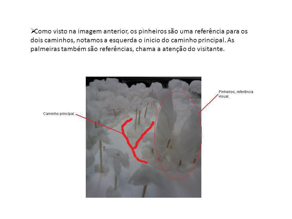 Como visto na imagem anterior, os pinheiros são uma referência para os dois caminhos, notamos a esquerda o inicio do caminho principal.