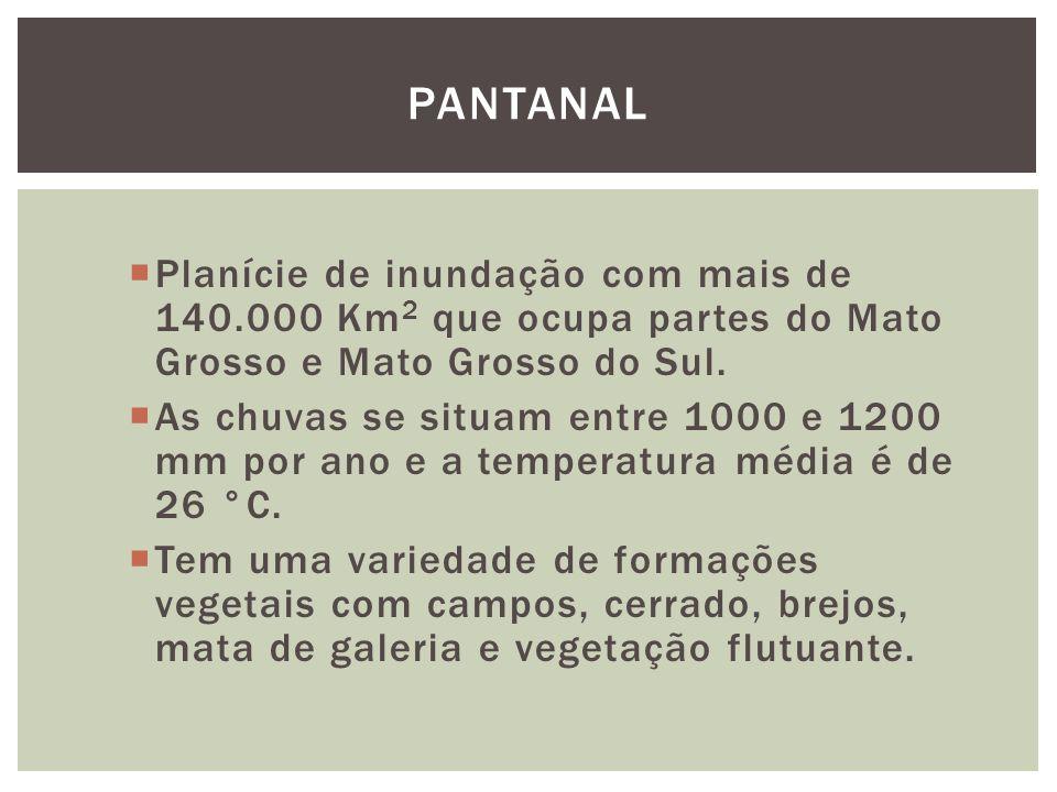 Pantanal Planície de inundação com mais de 140.000 Km2 que ocupa partes do Mato Grosso e Mato Grosso do Sul.