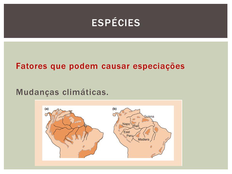 Espécies Fatores que podem causar especiações Mudanças climáticas.