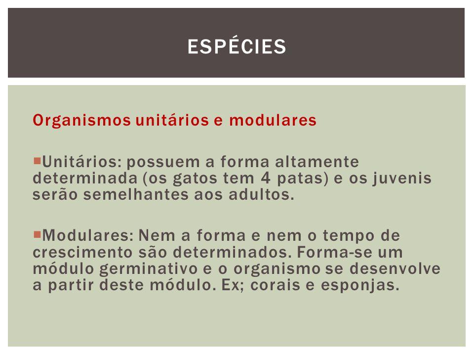 Espécies Organismos unitários e modulares