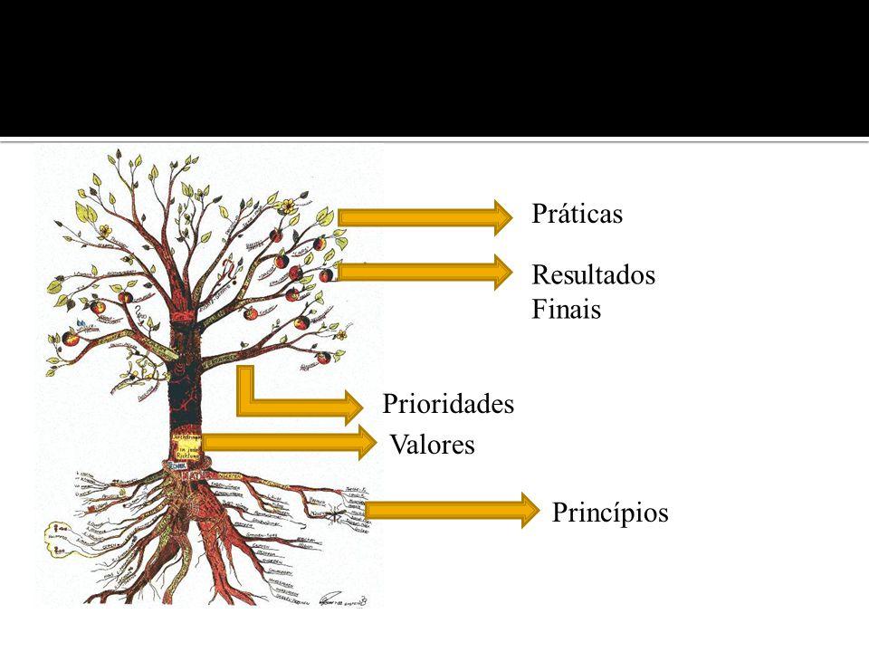 Práticas Resultados Finais Prioridades Valores Princípios