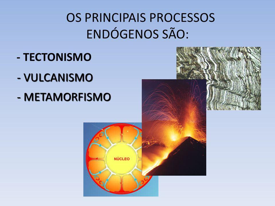 OS PRINCIPAIS PROCESSOS ENDÓGENOS SÃO: