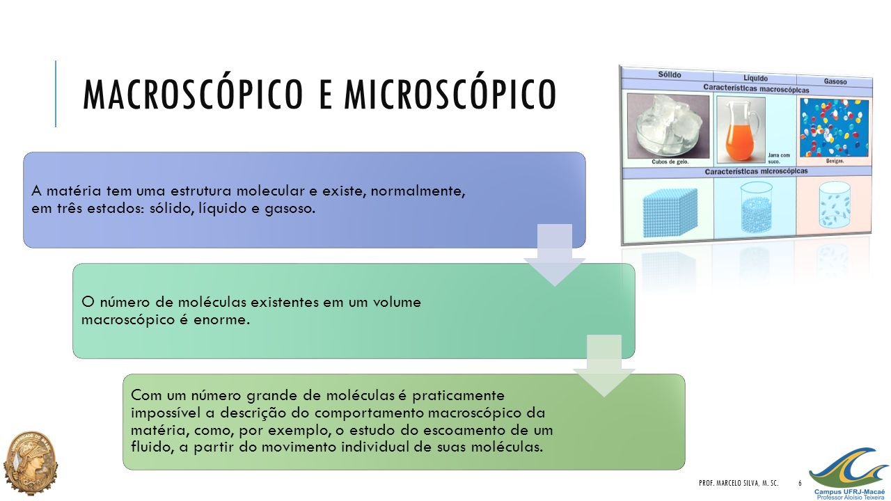 Macroscópico e Microscópico