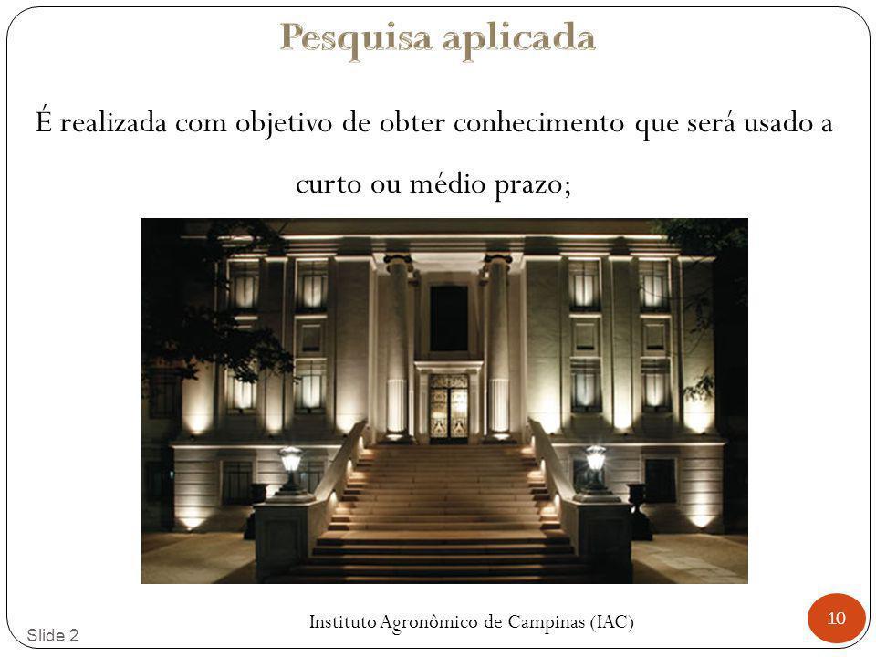 Instituto Agronômico de Campinas (IAC)
