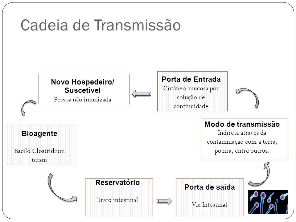 Cadeia de Transmissão Porta de Entrada Novo Hospedeiro/ Suscetível
