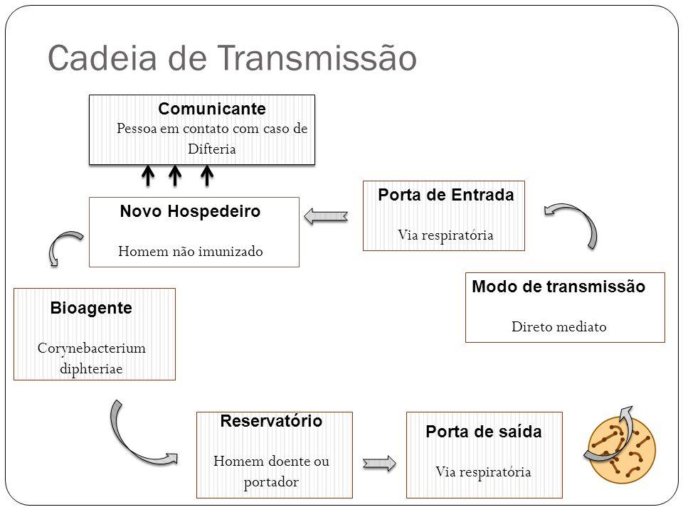 Cadeia de Transmissão Comunicante