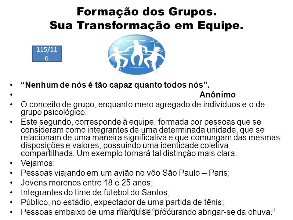 Formação dos Grupos. Sua Transformação em Equipe.
