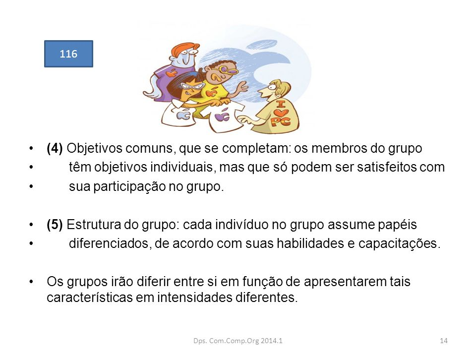 (4) Objetivos comuns, que se completam: os membros do grupo