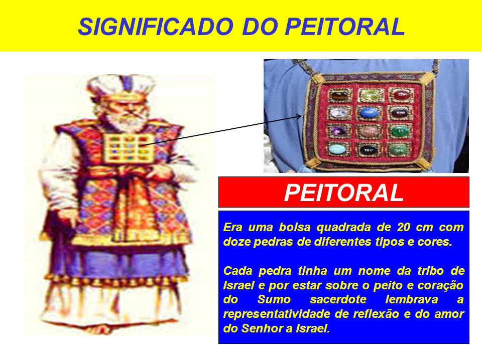 SIGNIFICADO DO PEITORAL
