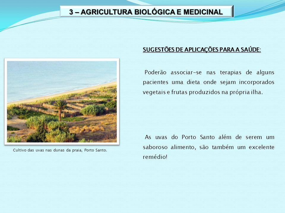 3 – AGRICULTURA BIOLÓGICA E MEDICINAL