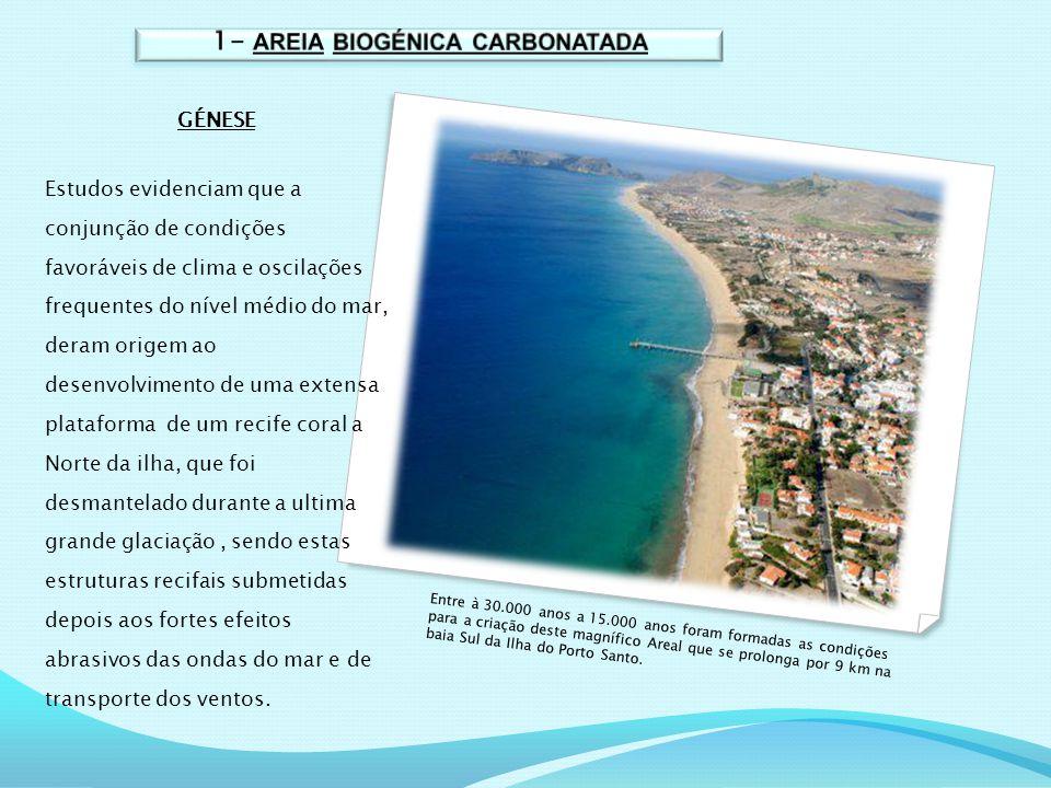 1- AREIA BIOGÉNICA CARBONATADA