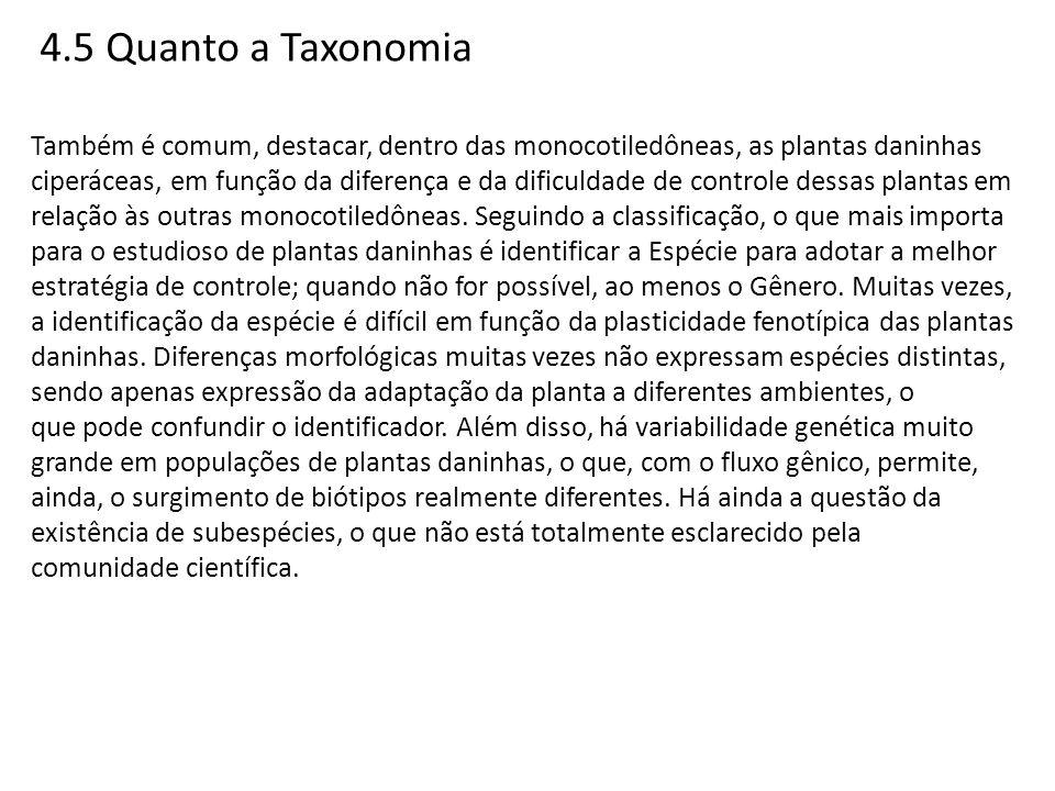 4.5 Quanto a Taxonomia