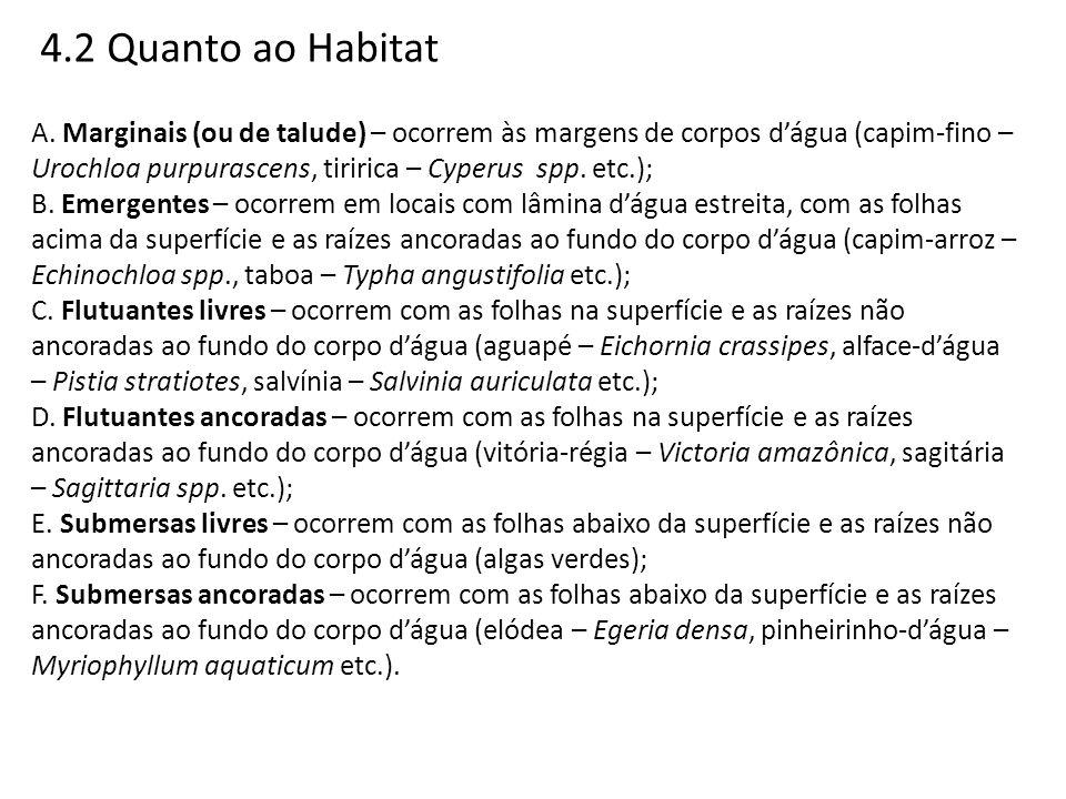 4.2 Quanto ao Habitat