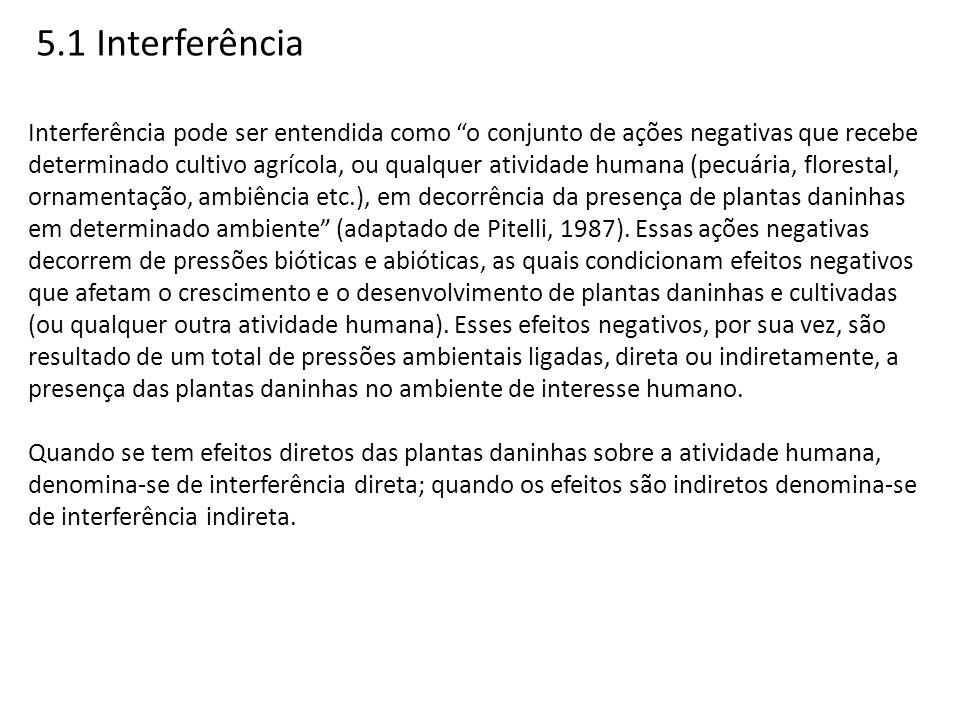 5.1 Interferência