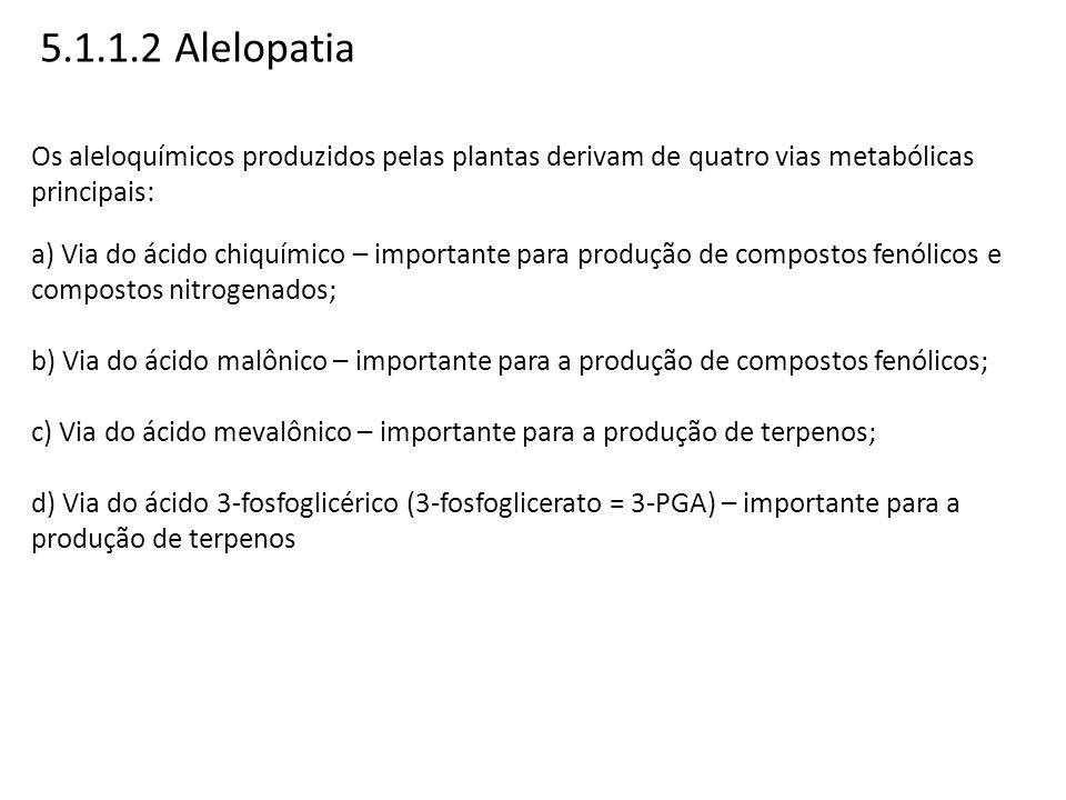 5.1.1.2 Alelopatia Os aleloquímicos produzidos pelas plantas derivam de quatro vias metabólicas principais:
