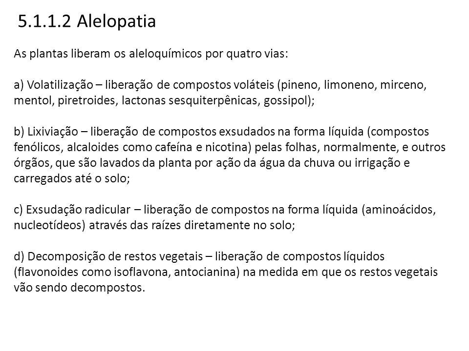 5.1.1.2 Alelopatia As plantas liberam os aleloquímicos por quatro vias: