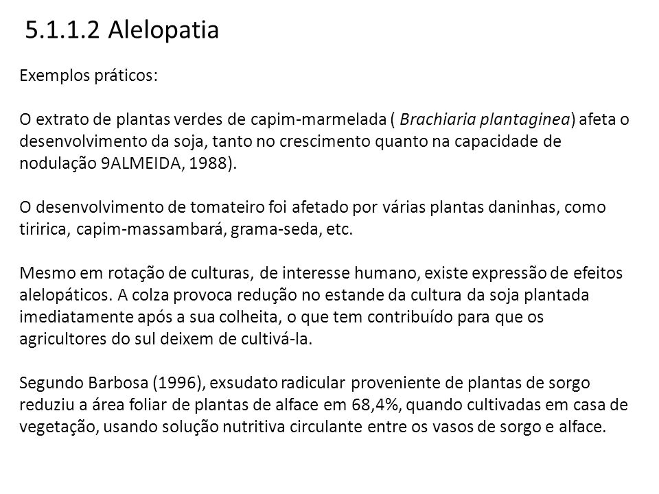 5.1.1.2 Alelopatia Exemplos práticos: