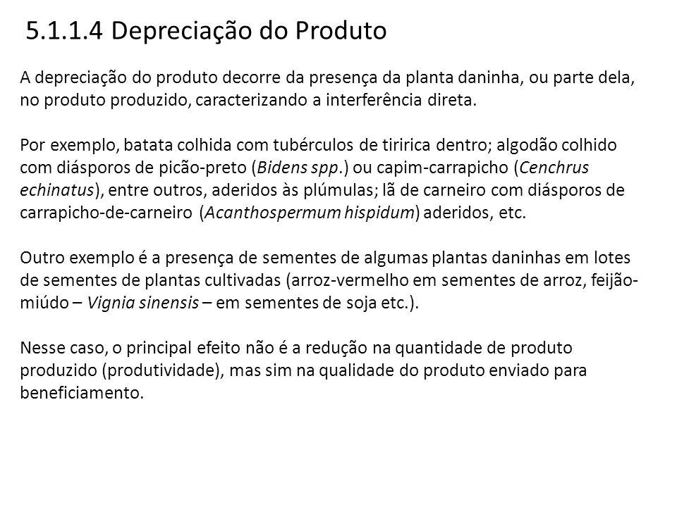 5.1.1.4 Depreciação do Produto