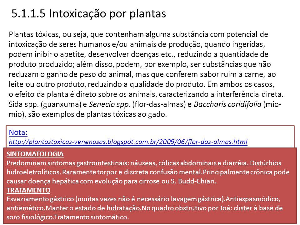 5.1.1.5 Intoxicação por plantas