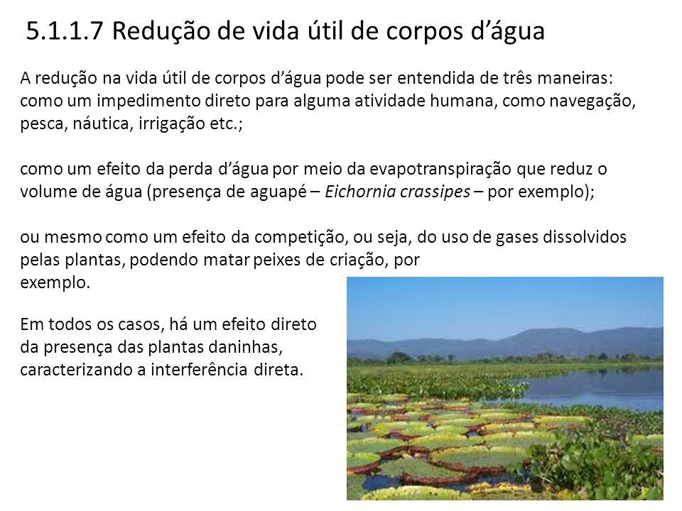 5.1.1.7 Redução de vida útil de corpos d'água