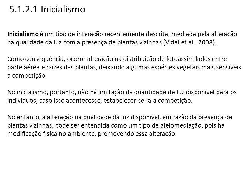 5.1.2.1 Inicialismo