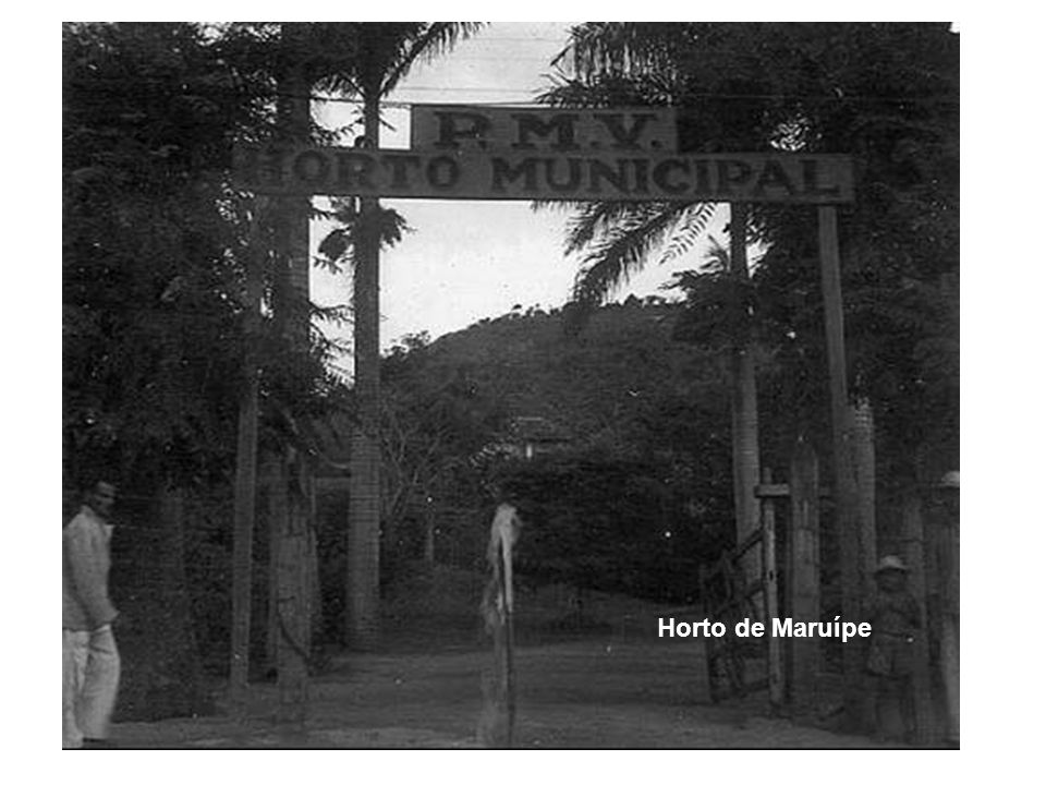 Horto de Maruípe