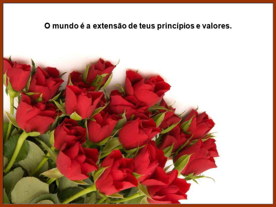 O mundo é a extensão de teus princípios e valores.