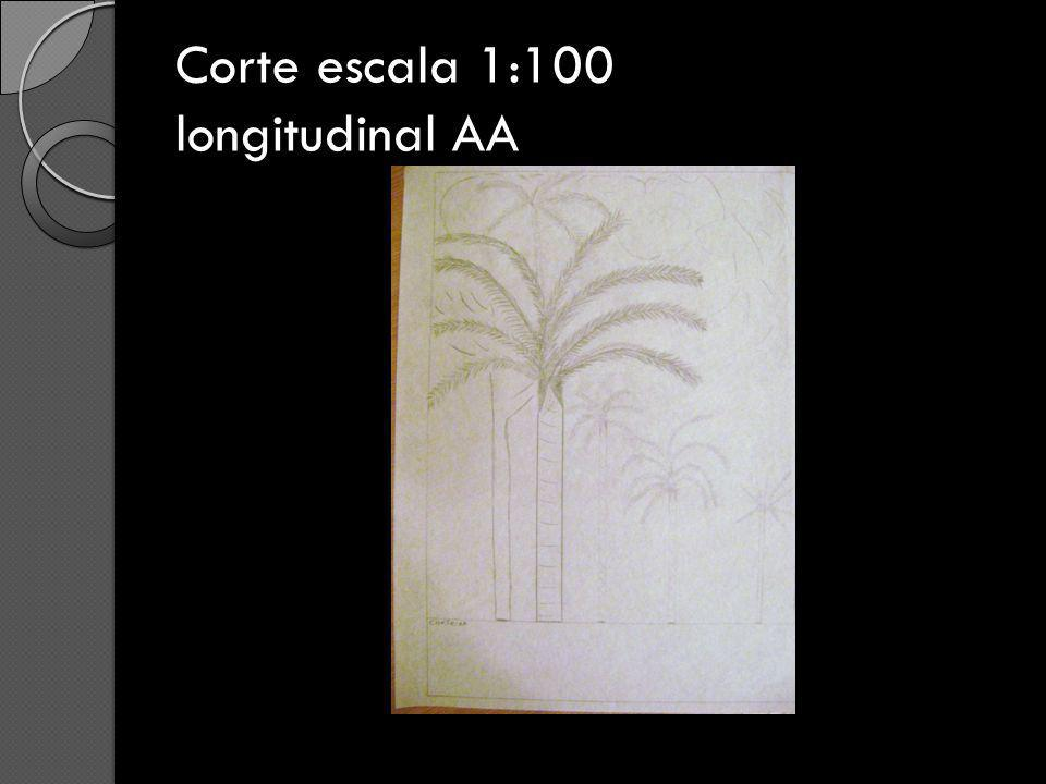 Corte escala 1:100 longitudinal AA