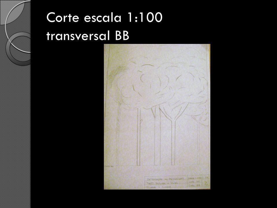Corte escala 1:100 transversal BB