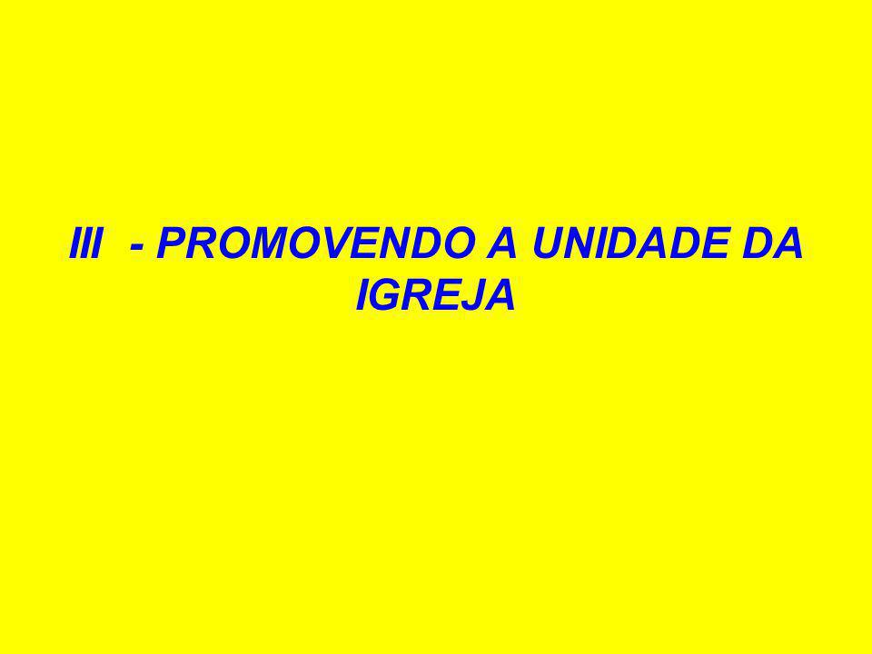III - PROMOVENDO A UNIDADE DA IGREJA
