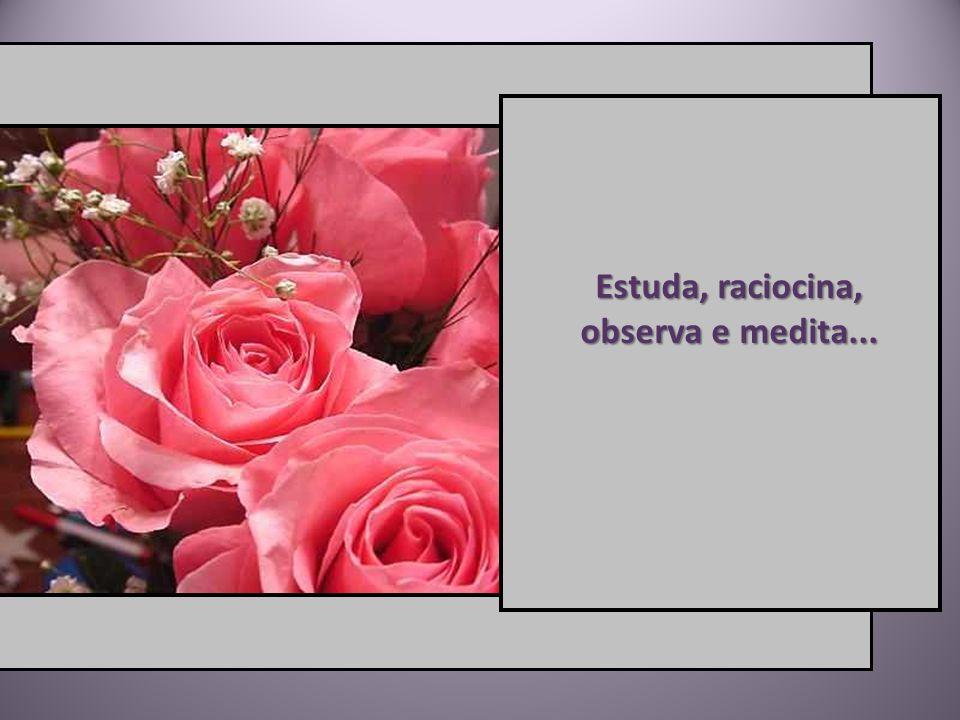 Estuda, raciocina, observa e medita...
