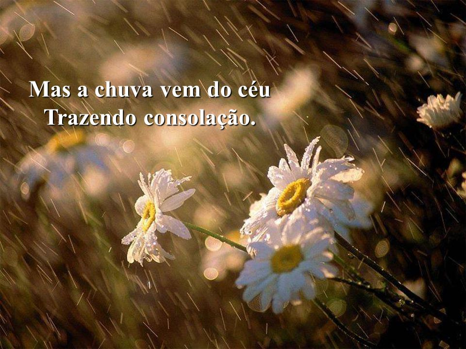 Mas a chuva vem do céu Trazendo consolação.