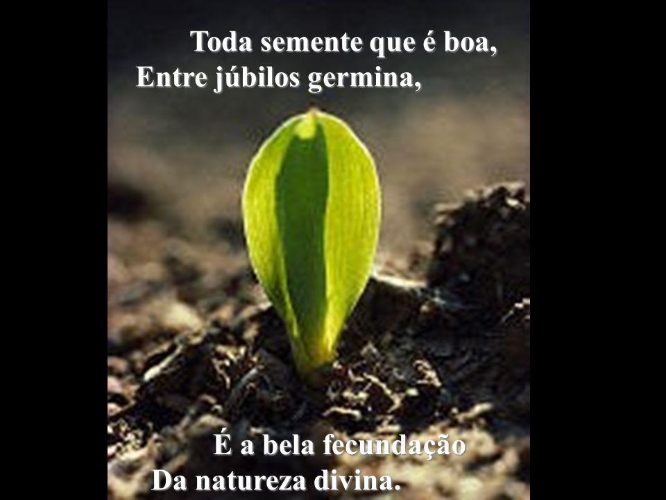 Toda semente que é boa, Entre júbilos germina, É a bela fecundação Da natureza divina.