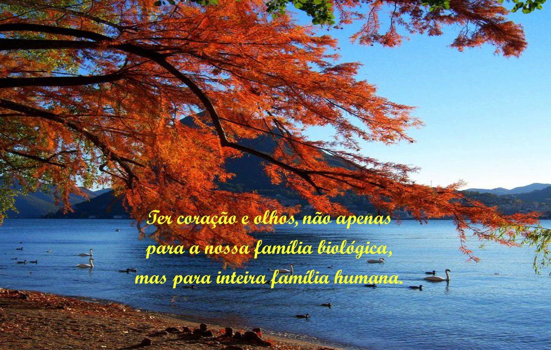 Ter coração e olhos, não apenas para a nossa família biológica, mas para inteira família humana.